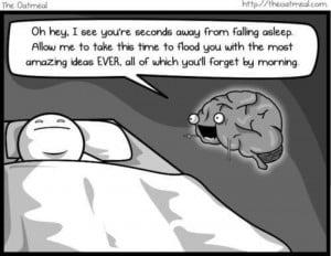 Cartoon from The Oatmeal.com
