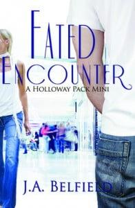 Fated Encounters by J.A. Belfield