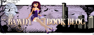 The Bawdy Book Blog