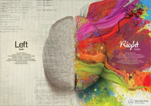 Left & Right brain image for Missouri Institute of Natural Sciences